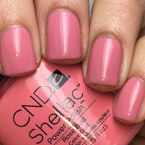 cnd shellac rose bud фото на ногтях