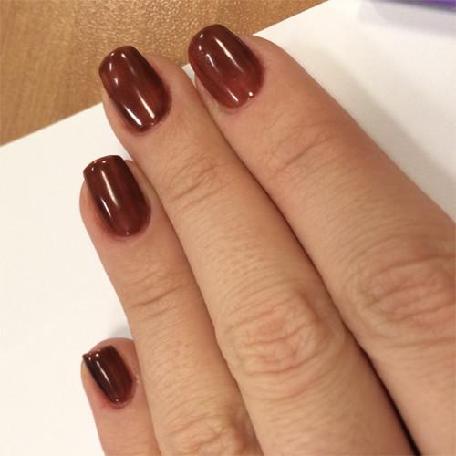Гель-лак Bluesky 80561 (коричневый) на ногтях
