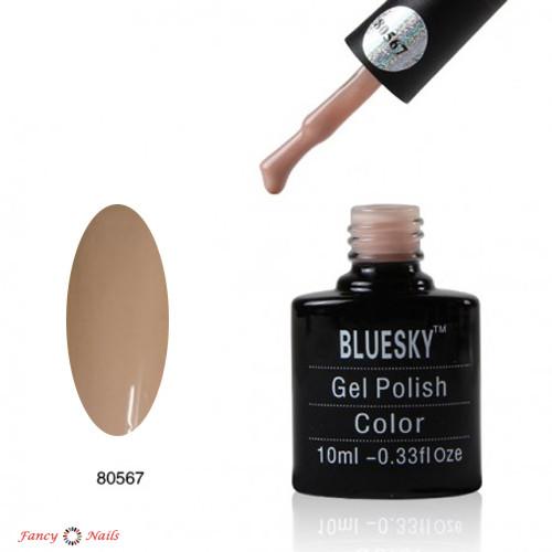 bluesky 80567