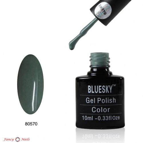 bluesky 80570