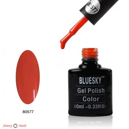 bluesky 80577
