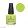 jessica 1143 green