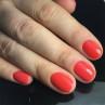 bluesky 80568 фото на ногтях
